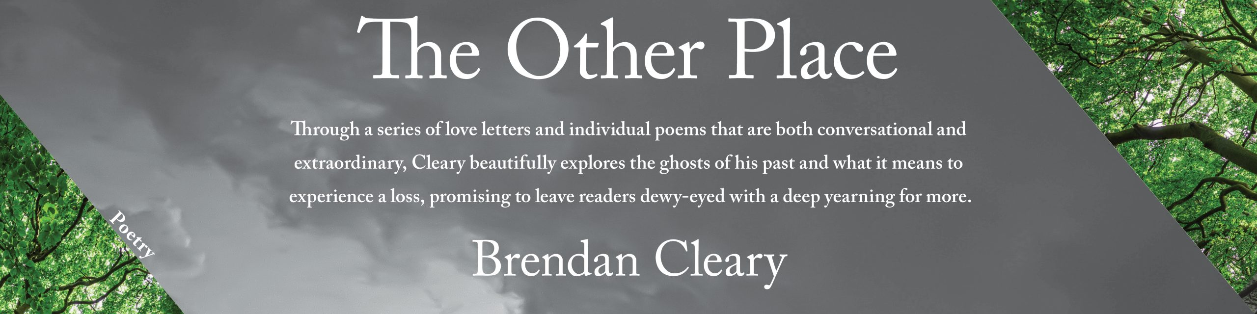 Promotional banner celebrating The Other Place by Brendan Cleary, a collection of poems