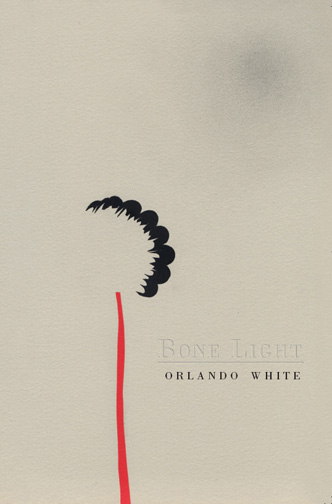 Embossed text stating Bone Light and black text stating Orlando White over a grey background with minimalist abstract art of a black and red flower.