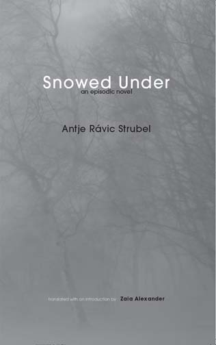 White and black text stating Snowed Under an episodic novel by Antje Ravic Stubel translated with an introduction by Zaia Alexander over the greyed image of trees