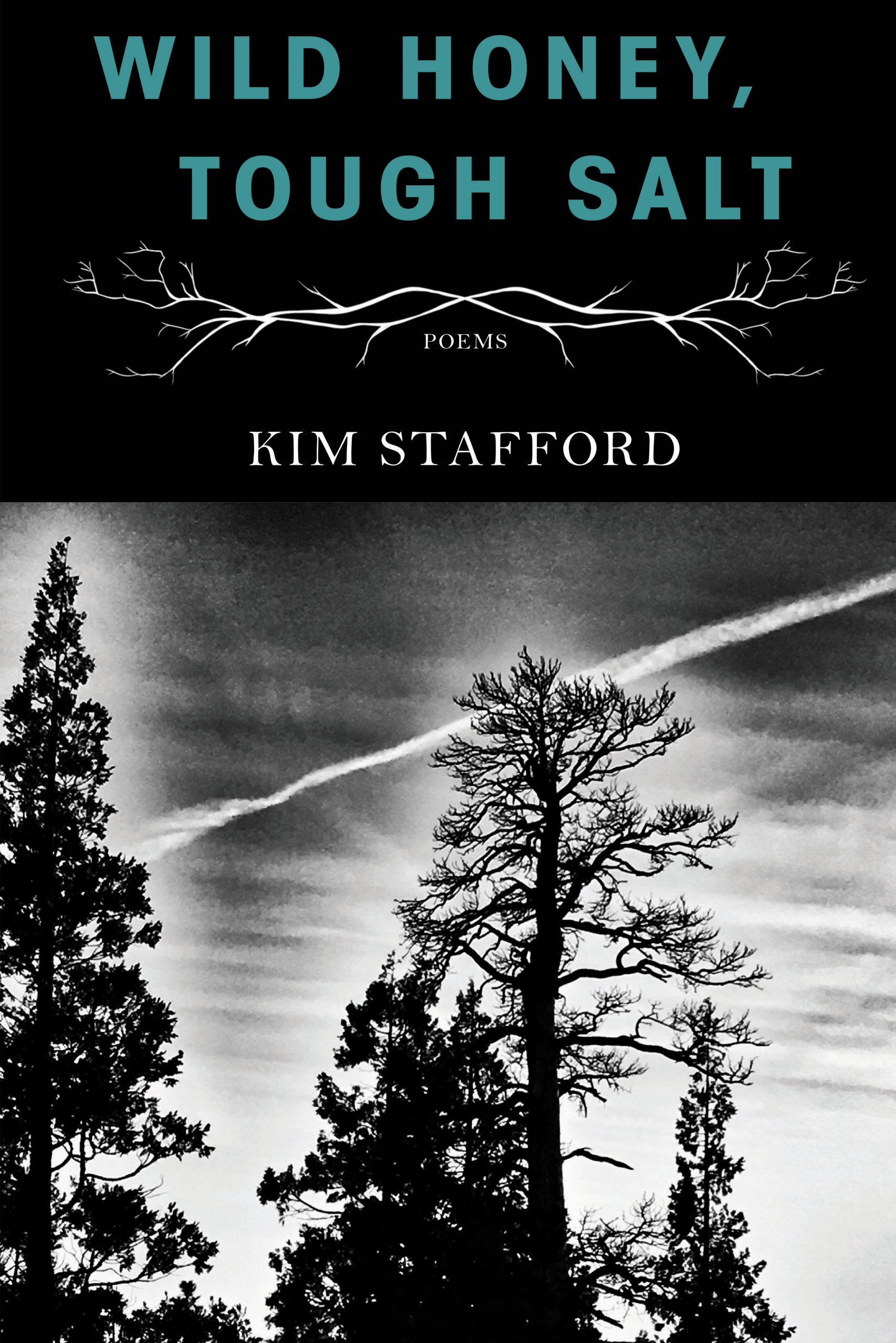 A black and white photograph of a forest and blue script towards the top that reads Wild Honey, Tough Salt poems by Kim Stafford.