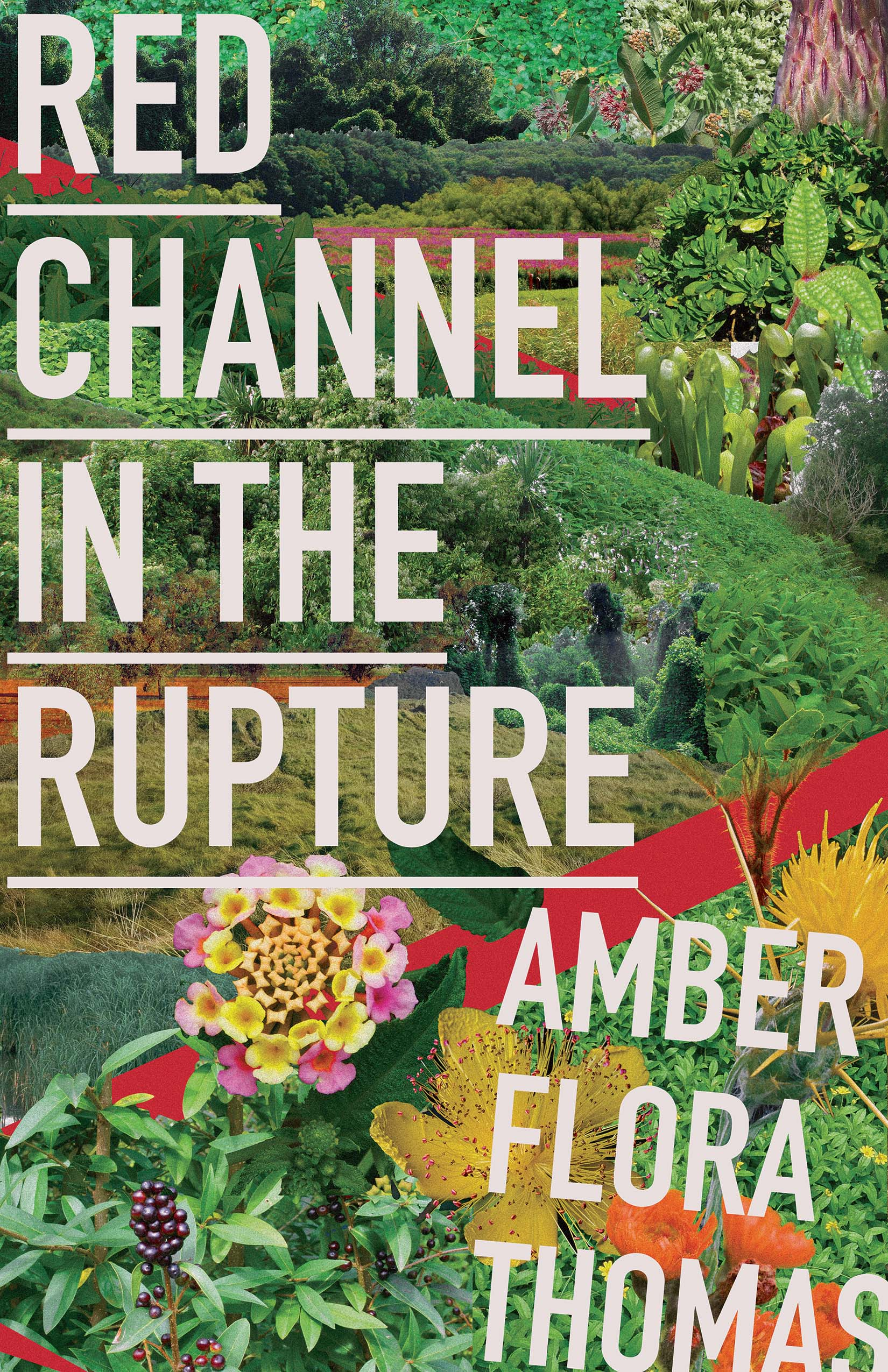 A collage of a colorful garden with white script that reads Red Channel in the Rupture by Amber Flora Thomas.