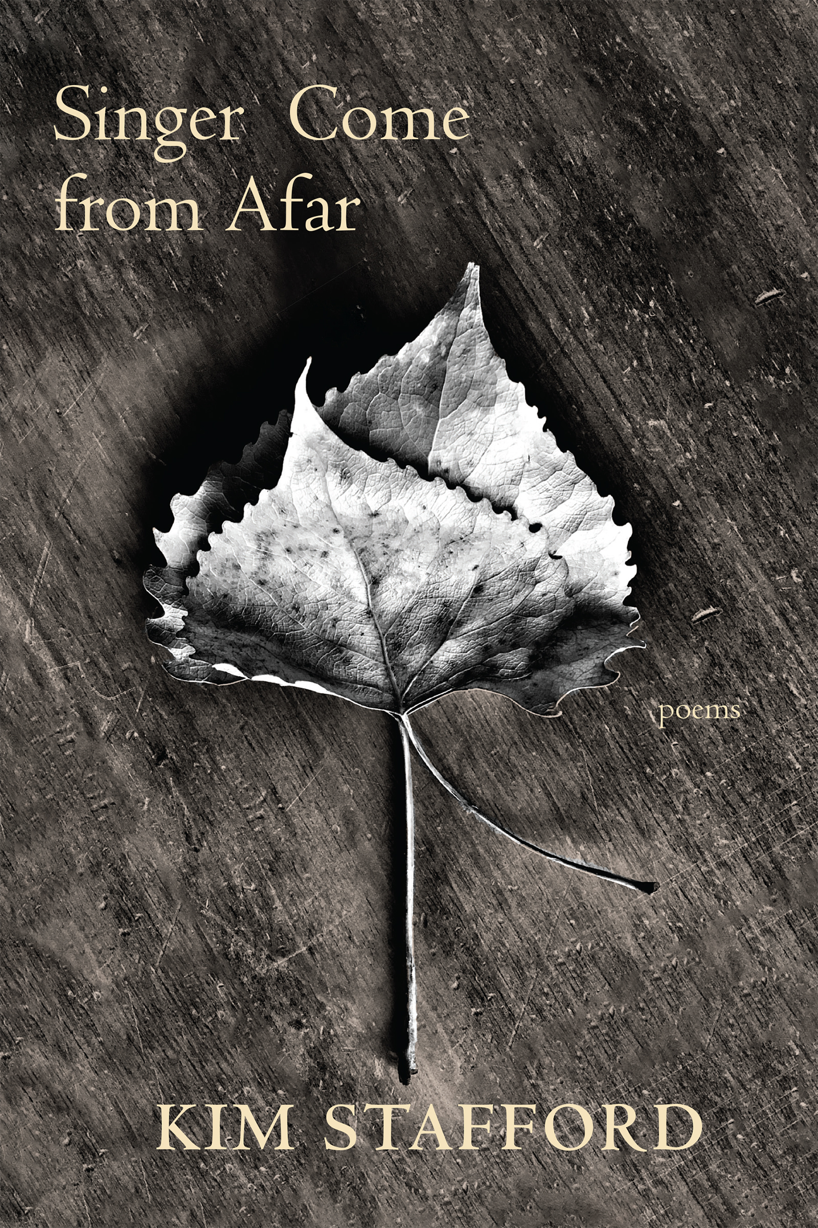 Wooden background with a white leaf at the center and yellow text that reads Singer Come from Afar by Kim Stafford.