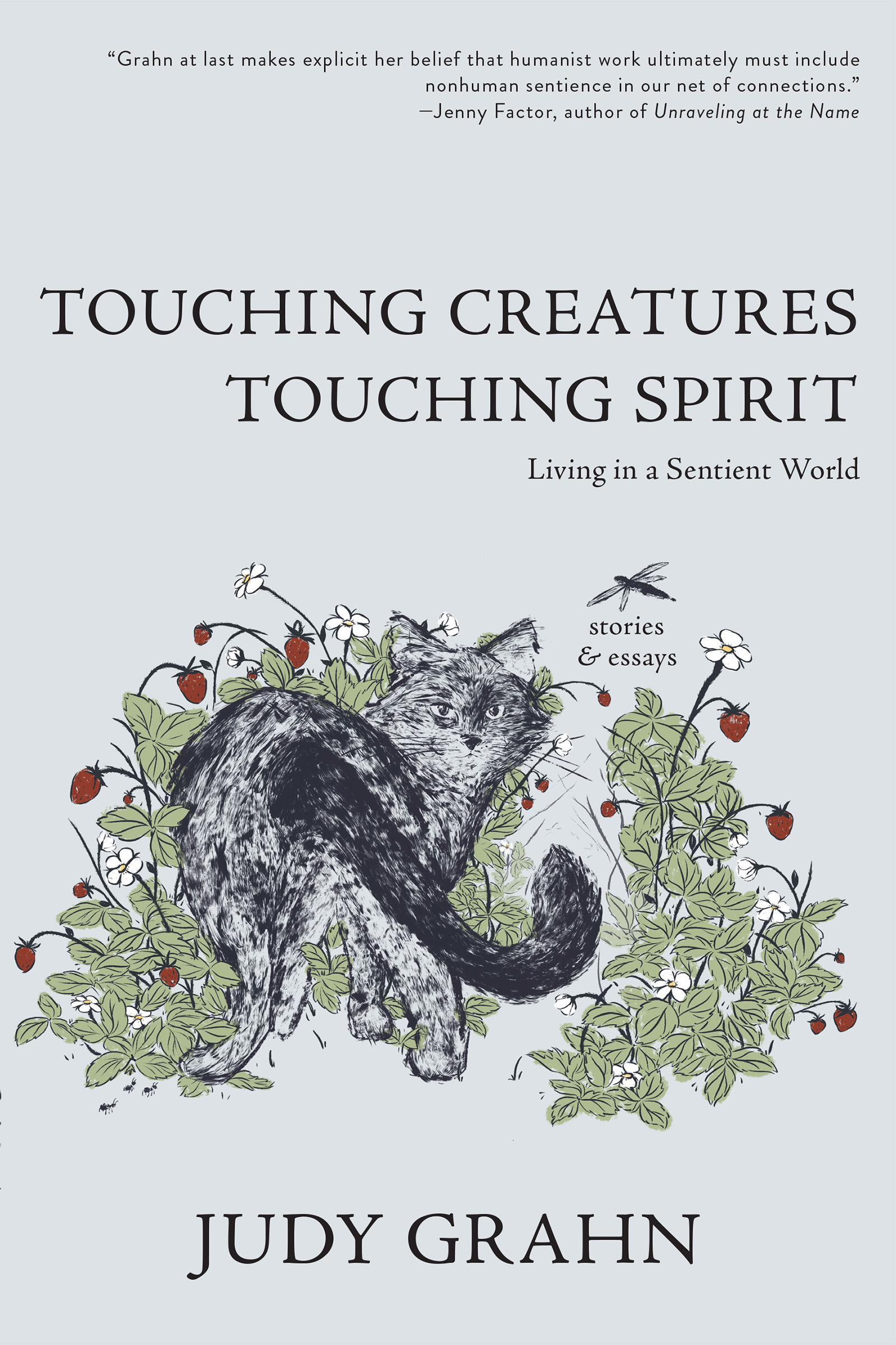A graphic design of a black cat inside strawberry bush with black text towards the top that reads Touching Creatures Touching Spirit stories and essays by Judy Grahn.