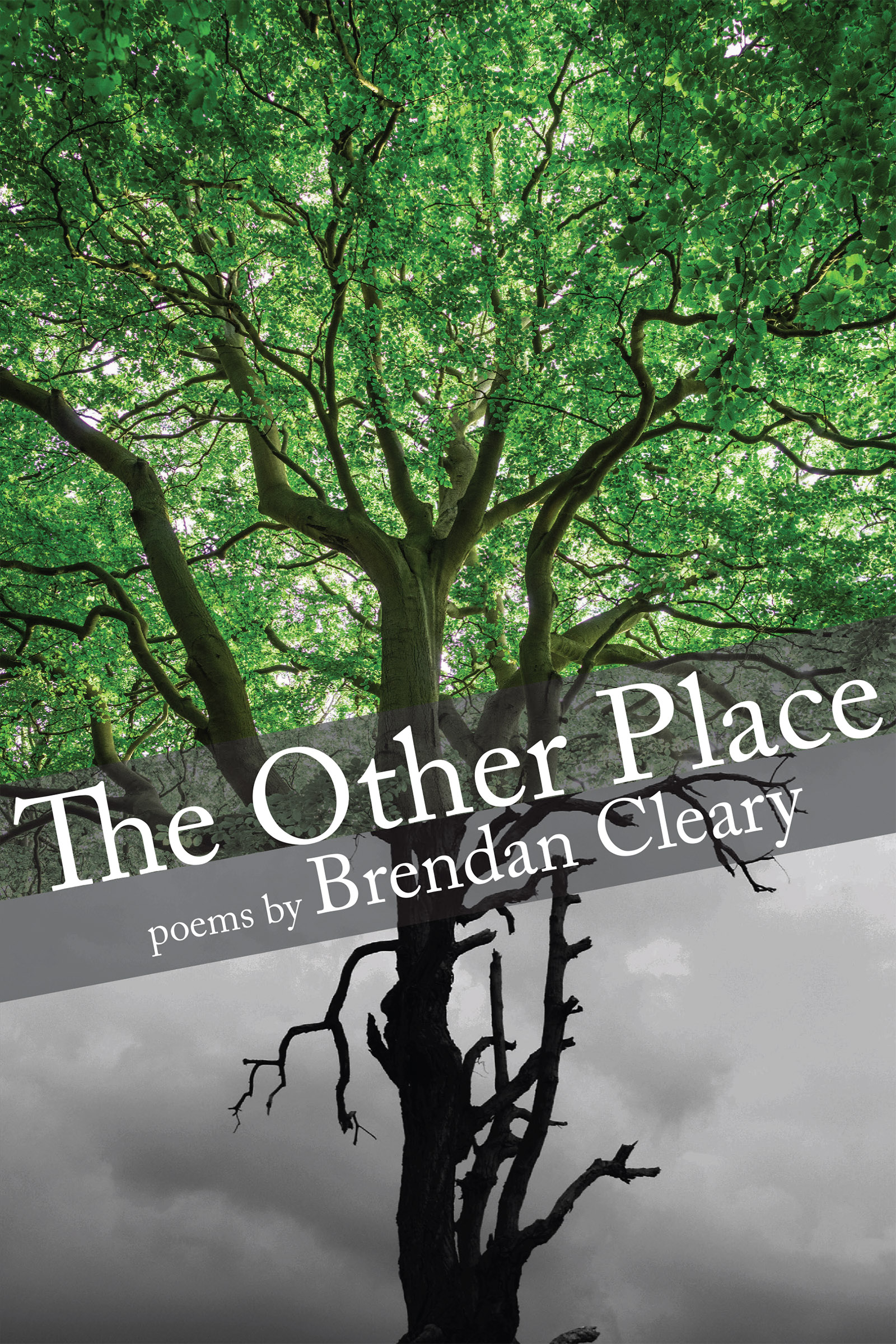 White script text that reads The Other Place poems by Brendan Cleary over an image of a tree half in color and half in black and white.